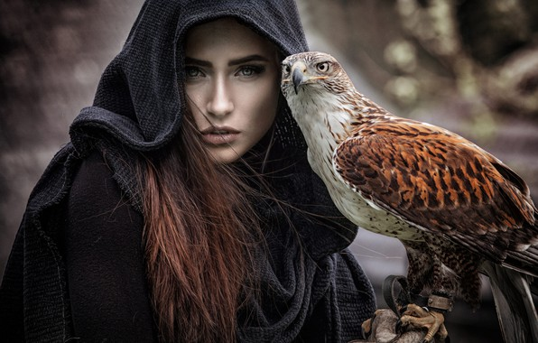 Picture eyes, look, girl, the dark background, each, bird, portrait, hood, claws, brown hair, Falcon, Cape, …