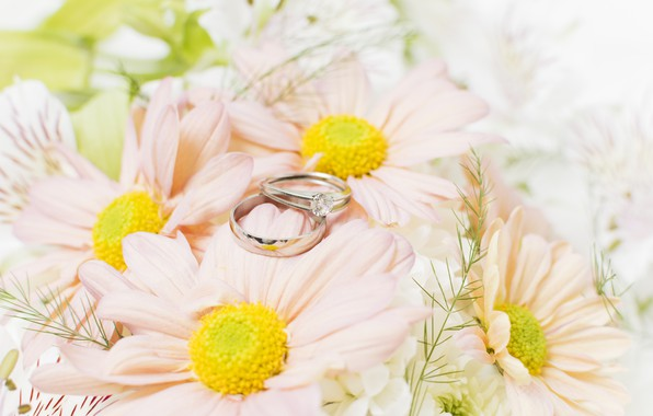 Picture ring, wedding, Wedding