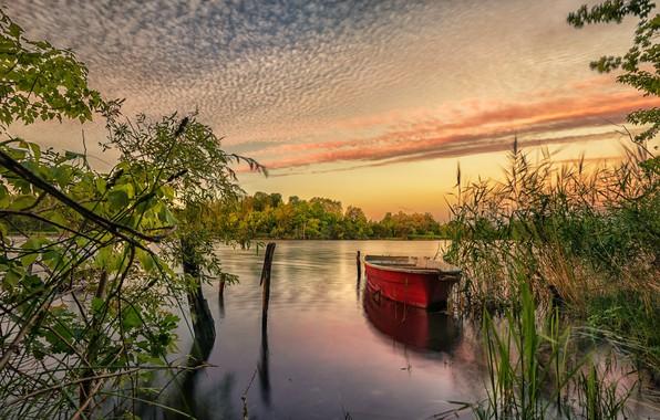 Picture river, dawn, boat