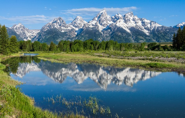 Picture trees, mountains, reflection, river, Wyoming, Wyoming, Grand Teton National Park, Rocky mountains, The Snake River, …