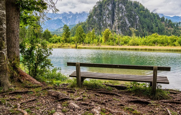 Picture greens, forest, clouds, trees, mountains, bench, rocks, shore, river