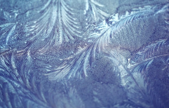 Picture frost, macro, pattern, texture, frost