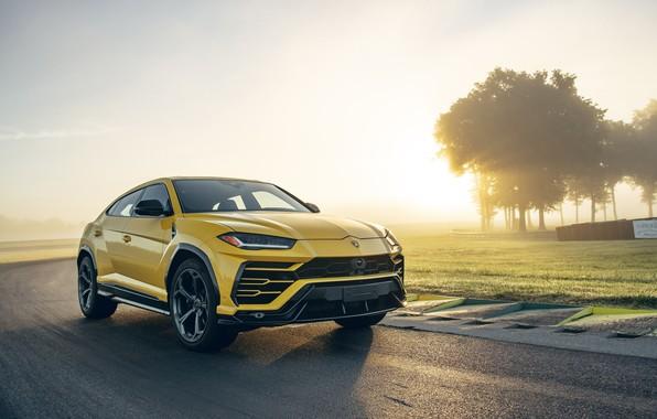 Picture Lamborghini, crossover, Urus, 2019