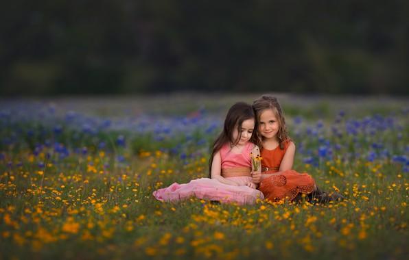 Picture flowers, nature, children, girls, meadow, grass, Lisa Holloway
