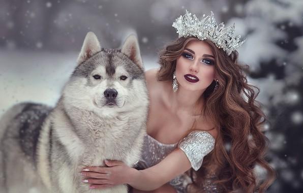 Picture look, girl, snow, pose, hand, dog, crown, makeup, dress, neckline, long hair, curls, Malamute, Marina …