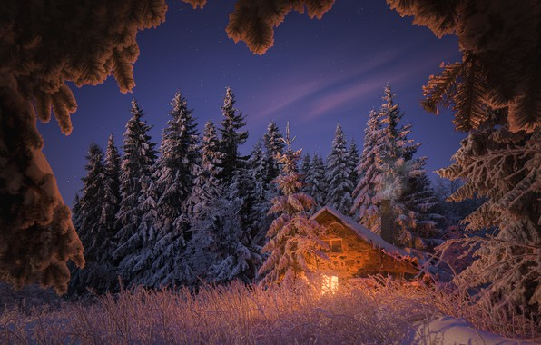 Picture winter, forest, the sky, grass, light, snow, trees, landscape, nature, house, stars, the evening, ate, …