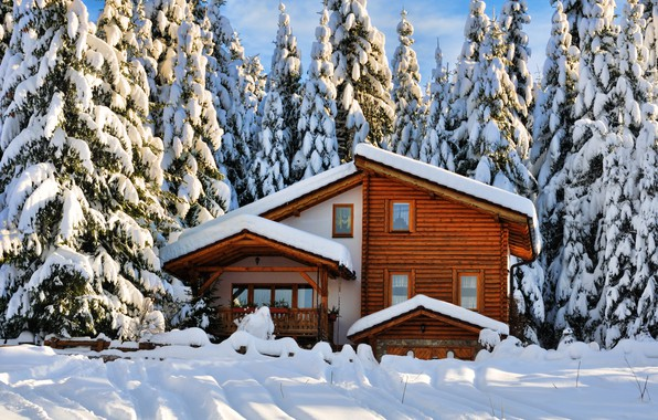 Picture winter, forest, snow, trees, landscape, nature, house, winter, tree, house, forest, cottage, landscape, nature, beautiful, …