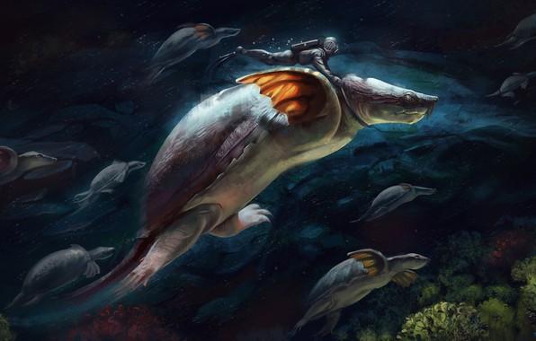 Picture fiction, turtle, art, underwater world, Illustrator, Alex Shiga, Exploring