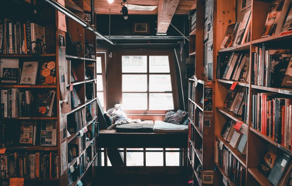 Picture comfort, books, pillow, window, library