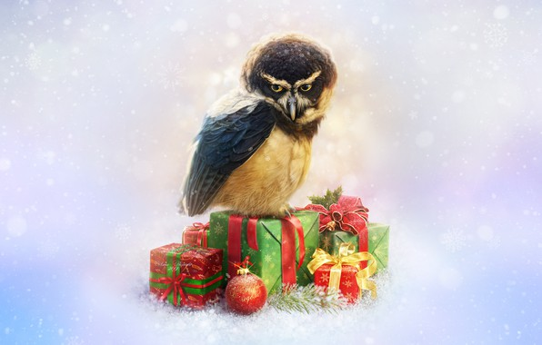 Picture Owl, Bird, Snow, New Year, Style, Decoration, Holiday, Art, Art, Style, Snow, New Year, Owl, …