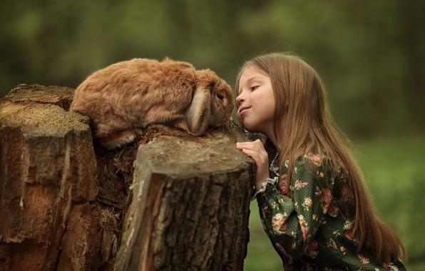 Picture animal, stump, rabbit, girl, child, Julia Kubar