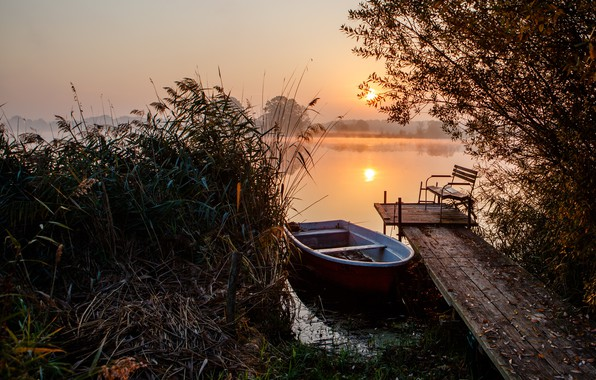 Picture grass, landscape, nature, lake, cane, dawn, boat, morning, pier, mostok