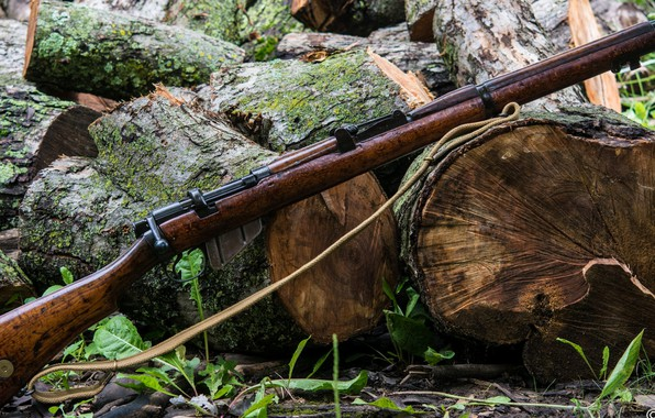 Picture weapons, rifle, weapon, Enfield, rifle, smle, Lee-Enfield, Lee-Enfield, enfild no3, enfild