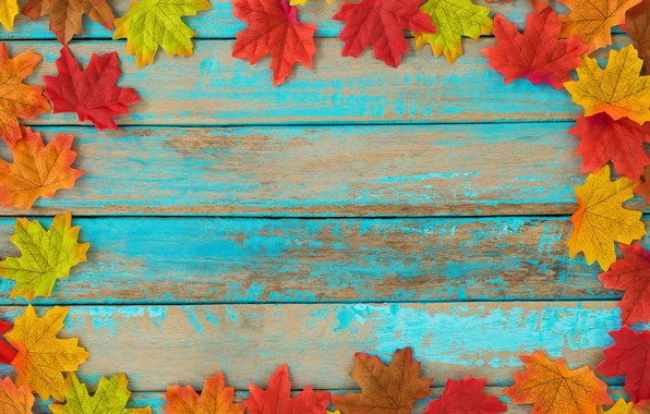 Picture autumn, leaves, background, tree, colorful, vintage, wood, background, autumn, leaves, maple