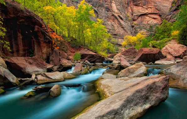 Picture autumn, trees, stones, rocks, Utah, USA, the river virgin, Zion