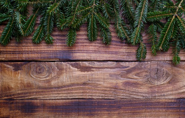 Picture background, tree, Board, tree, Christmas, wood, background, fir tree, fir-tree branches