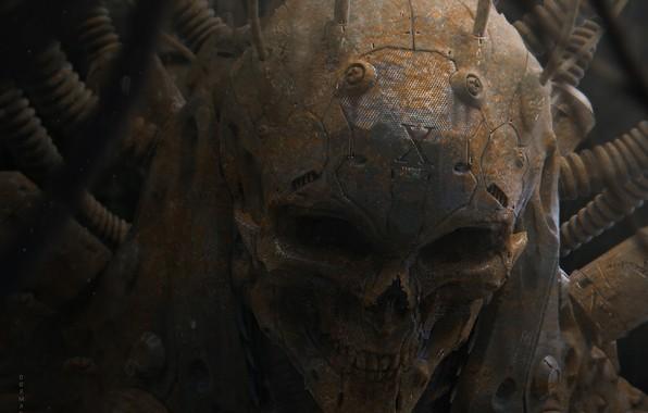 Picture skull, monster, grin, alien, evil, cyborg, art, orbit, human, Furio Tedeschi, Dormant