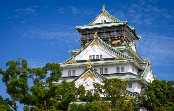 Picture the sky, trees, castle, Japan, Japan, Osaka, Osaka, Osaka Castle, Osaka-Jo