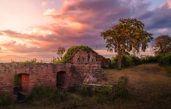 Picture road, autumn, summer, the sky, grass, clouds, sunset, nature, old, tree, mood, the building, Windows, …