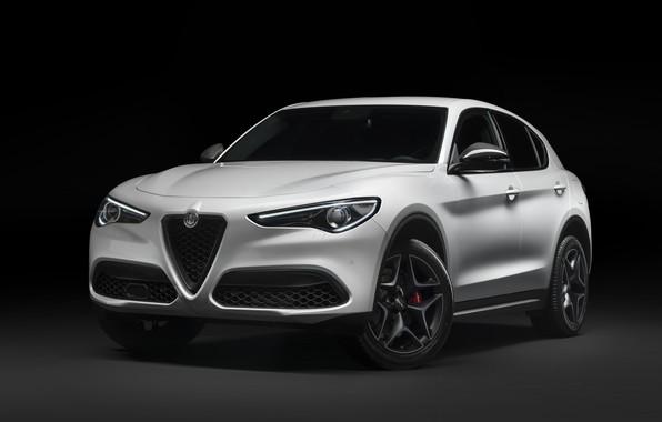 Picture Alfa Romeo, crossover, Stelvio, 2019, Stelvio You