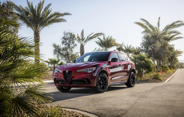 Picture Alfa Romeo, Four-leaf clover, Stelvio, Black Edition