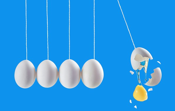 Picture eggs, eggs, Dina Belenko, Newton's cradle