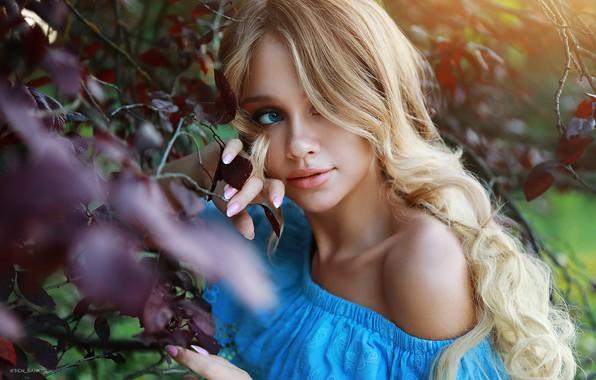 Picture leaves, girl, branches, face, portrait, shoulder, long hair, Denis Lankin, Polina Mihaylovskaya