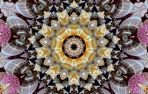 Picture background, pattern, graphics, texture, geometry, symmetry, mandala