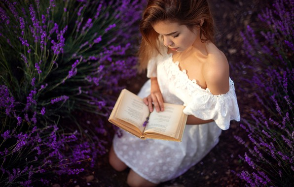 Picture girl, flowers, pose, mood, dress, book, shoulder, lavender, Denis Lankin