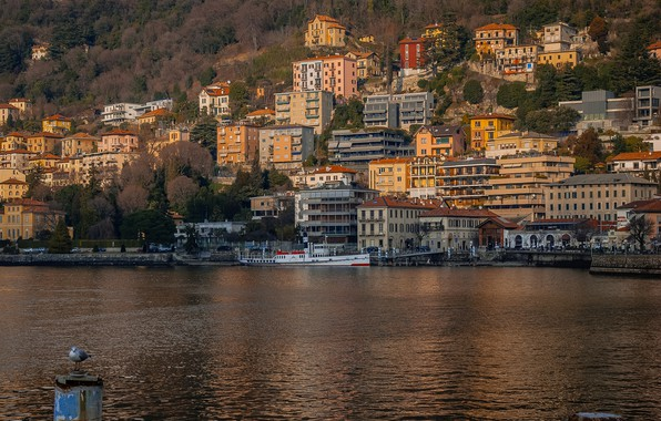 Picture forest, trees, mountains, lake, rocks, shore, home, pier, Italy, Como, Lombardy