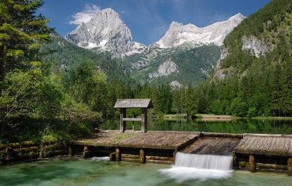 Picture forest, mountains, lake, Austria, Austria, Alps, Upper Austria, Upper Austria, Arbitration Weiher Lake, Lake Sheerwater, …