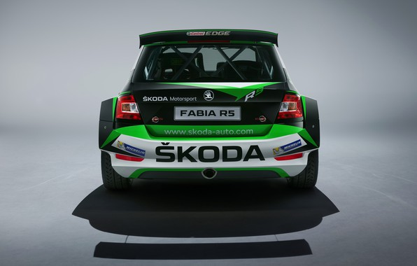 Picture Concept, rear view, Skoda, 2019, Fabia R5