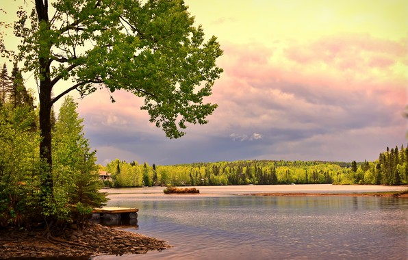 Picture forest, trees, landscape, sunset, nature, lake, stones, shore, Canada, QC