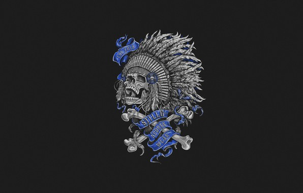 Picture Minimalism, Skull, Feathers, Bones, Art, Art, Indian, Skull and Bones, by Anna Ezer, Anna Thousand, …