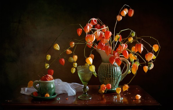 Picture branches, glass, mug, pitcher, still life, lanterns, table, physalis
