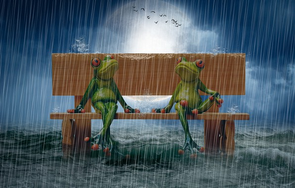 Picture sea, bench, rain, The moon, photo manipulation, puppet, birds in the sky, frogs