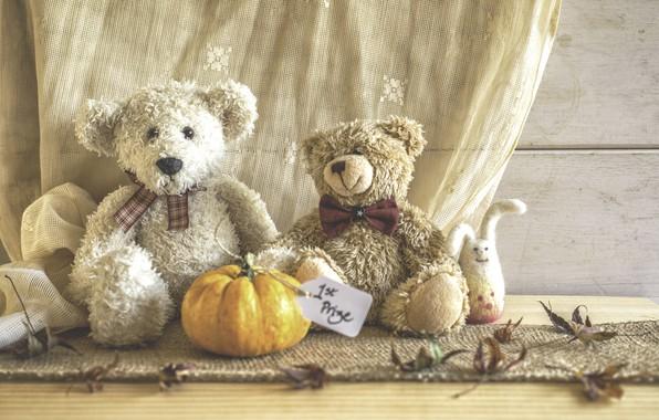 Picture toys, bear, pumpkin