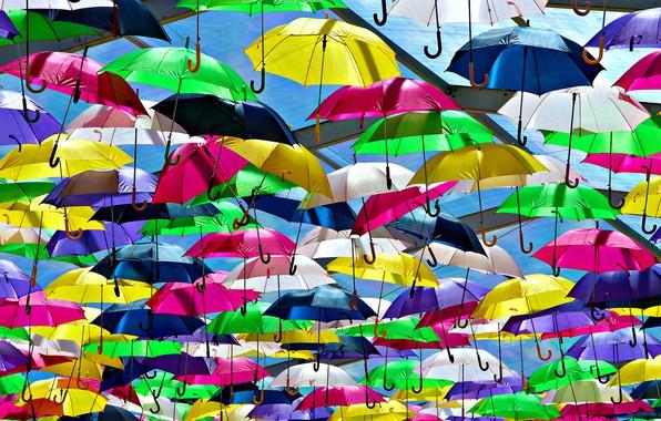 Picture bright, umbrella, colorful