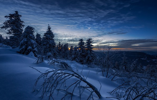 Picture winter, the sky, snow, trees, landscape, mountains, branches, nature, dawn, stars, morning, Switzerland, ate, Daniel …