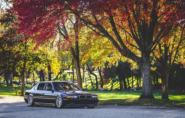 Picture car, autumn, bmw, BMW, autumn, Boomer, e38, 7 series, E38