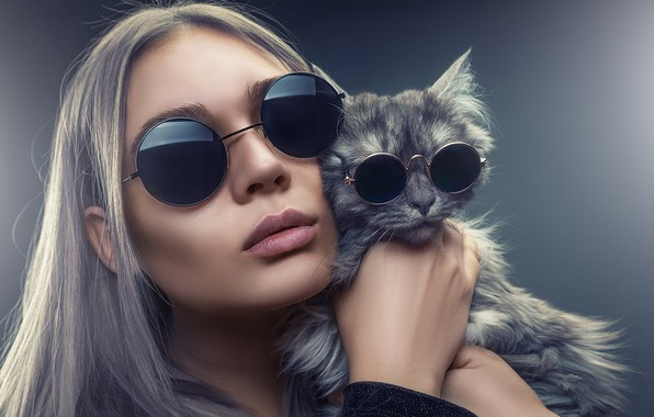 Picture cat, cat, girl, face, style, background, glasses, Andrey Bortnikov