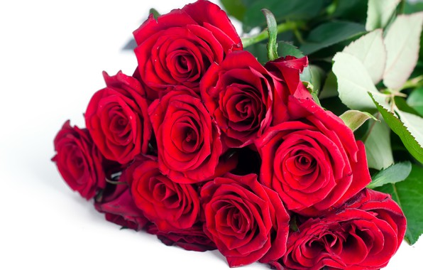 Picture flowers, roses, bouquet, red, red, flowers, beautiful, romantic, roses