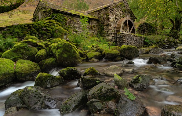 Picture stones, England, moss, mill, river, England, Cumbria, Cumbria, Borrowdale Valley, Borrowdale Valley