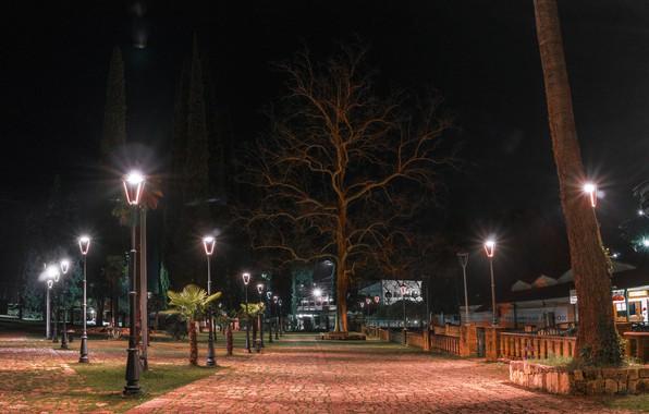 Picture lights, Abkhazia, new Athos, evening Park