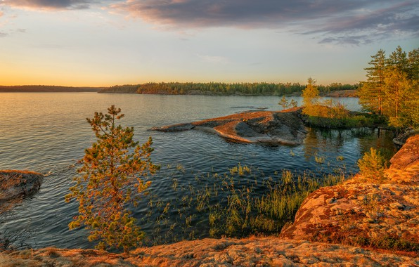 Picture autumn, forest, trees, landscape, sunset, nature, lake, stones, Bank, Lake Ladoga, Karelia, Ladoga, Vladimir Ryabkov, …