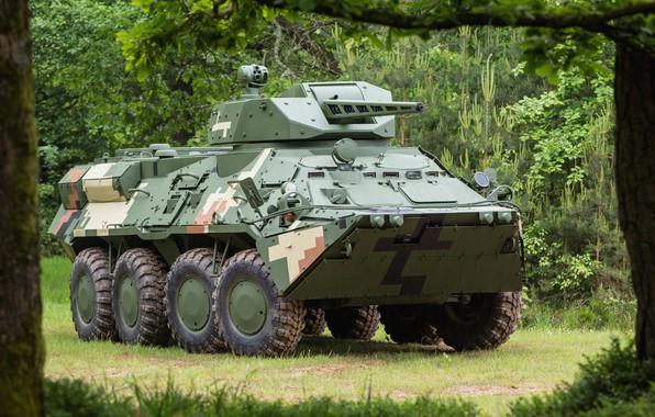 Picture Ukraine, OKB imeni Morozova, CPWS-30, BTR-3E, BTR-3