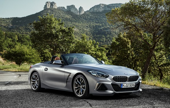 Picture trees, mountains, grey, vegetation, BMW, Parking, Roadster, roadside, BMW Z4, M40i, Z4, 2019, G29
