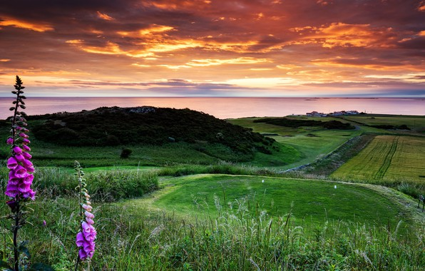 Picture Castle, England, Bamburgh, Golf Club