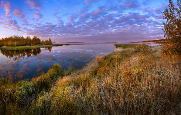 Picture frost, autumn, forest, grass, landscape, sunset, nature, river, Bank