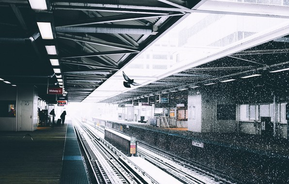 Picture snow, people, dove, station, platform, Ryan Millier